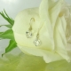 Raw Crystal Gold Earrings
