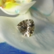 Dark Smoky Herkimer Diamond Gemstone