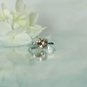 Heart champagne herkimer ring