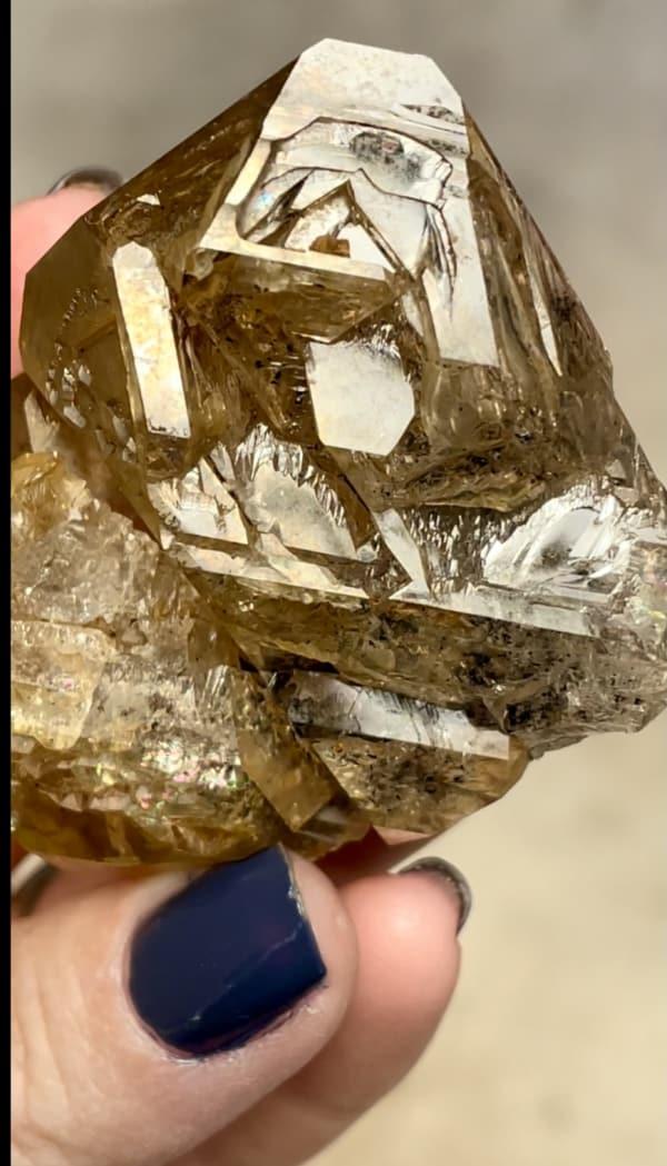 Skeletal golden healer herkimer